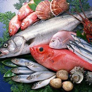 新鮮な魚をお楽しみいただけます!