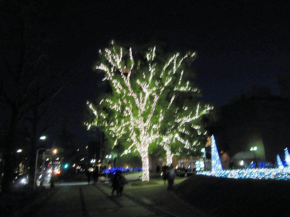 メルパルク 横浜