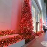 33689214 - 銀座もクリスマスイルミネーションで綺麗☆彡