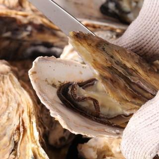 新鮮な牡蠣と美味しいお酒は抜群にあう!