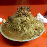 ラーメン富士丸 - 富士丸ラーメン麺半分野菜マシ