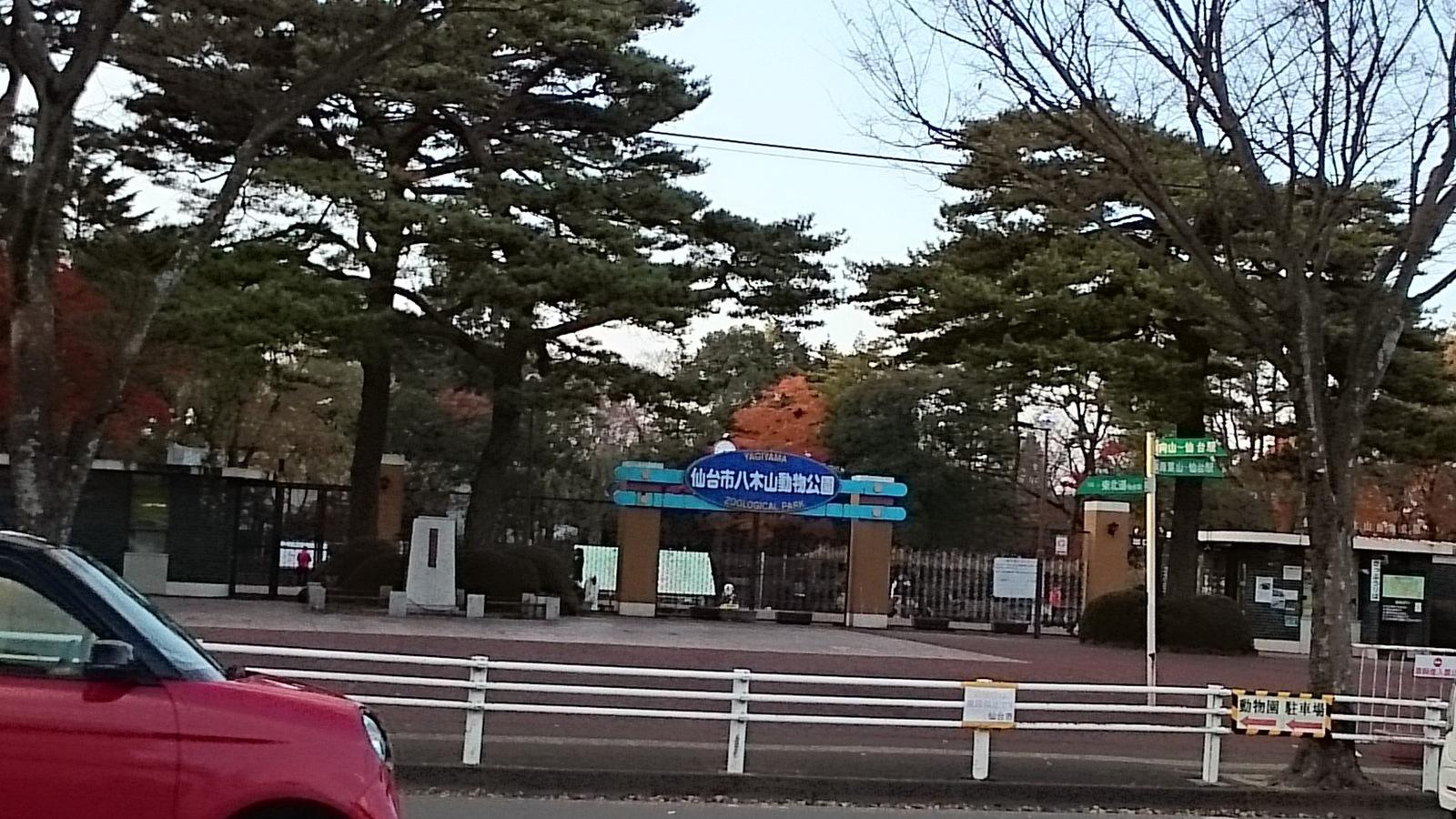 セブンイレブン 仙台ベニーランド前