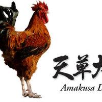 日本最大級の地鶏『天草大王』!!