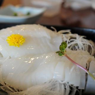 河太郎 - 料理写真:この日はコウイカでした。