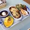 ドッグヒル - 料理写真:ワンプレートヒルズ  ・焼カレー ・揚げ物 ・春巻き ・サラダ ・フルーツ ・コーヒーゼリー  足元にワンちゃん達がきてワイワイ楽しめます!