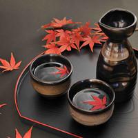 飲み放題はこだわりの日本酒、焼酎を多数完備!