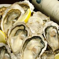 北海道厚岸産牡蠣漁師大澤さん直送の生かき