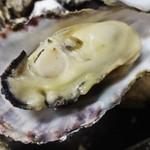 かき小屋フィーバー@BLUE JAWS 名古屋烏森店 - 牡蠣のガンガン焼きのセルを開いてみました。