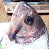 あけ浜食堂 - 料理写真:鯛の頭