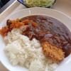 スクォーレル - 料理写真:三元豚のカツカレー