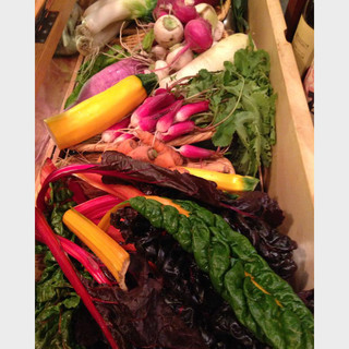 静岡中伊豆菜園から無農薬の野菜