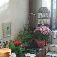 MOMINOKI HOUSE -
