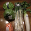 はだのじばさんず - 料理写真:キャベツ、レタス、にんじん、ネギ、大根