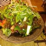 35618179 - 生野菜サラダ