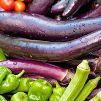 自家農園で育てた獲れた野菜は実際に店舗でメニュー化!