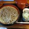 そば処 つばき野 - 料理写真:『十割りそば』(税込800円)