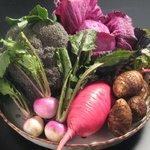 神宮前もくち - 朝採れ 越谷地野菜