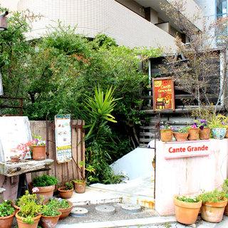 <大阪各地に支店を展開しているインド系エスニック・カフェ>