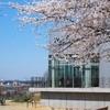 鹿野園 - 外観写真:春・桜と鹿野園!