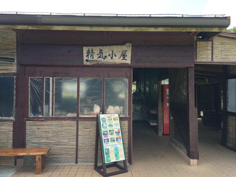 アシムイカフェ