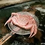 36521516 - ピチピチの毛蟹