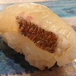 第三春美鮨 - 15-08 真鯛 2k 釣 浜〆 神奈川県佐島       イノシン酸の旨みたっぷり
