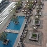 ホテル ラ・スイート神戸ハーバーランド - バルコニーから見える庭園