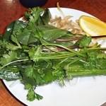 サイゴン - 付け合せ野菜 (牛肉フォー)