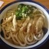 文吾うどん - 料理写真:ごぼう天うどん