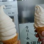 高田アイス - スペシャル&ソフト