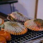 新島水産 - ひおうぎ貝
