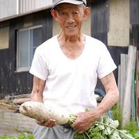野菜は京都!素材は全国!
