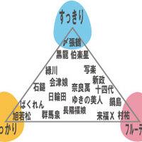 オリジナル日本酒チャートで、楽しく日本酒を味わってください!