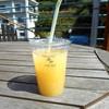 南の果樹園 ニュウズ - ドリンク写真:ニューサマーオレンジ100%搾りたて生ジュース(デッキスペースにて♪)