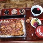 コジマヤ本店 - 天然鰻重 (上)