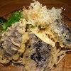 手打ち蕎麦 ほかげ - 料理写真:茄子天と九条葱の冷やかけ