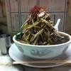味寿々 - 料理写真:2012/09 デラックス味寿々メン¥850+大盛り¥200