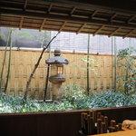 赤坂菊乃井 - カウンターからの眺め。もみじに陽が当たって綺麗でした。