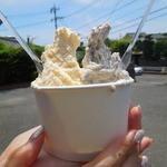 飯田牧場 - ミルク&チョコチップ