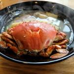 見晴 - 料理写真:鳥の海ラーメン(1,000円 限定5食)
