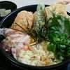 鉄のあかり - 料理写真:天ぷらぶっかけうどん