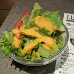 BINDI - サラダ