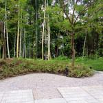 39406946 - カフェから見えるお庭