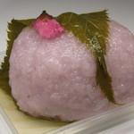 元町 香炉庵 - 【再訪5】桜餅