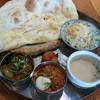 チャンダニ - 料理写真:Dセット、カレー2、ティカ、ケバブ、スープ、サラダ、デザート