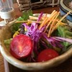 やさい食堂 堀江座 - 野菜サラダも彩りよく