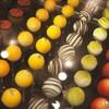 カナルカフェブティック - 料理写真:カラフルなシュセット!