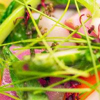 ミシェルブラスのスペシャル30種類の温野菜ガルグイユ