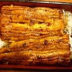 うな新 - 料理写真:2015年7月 うな重 上 1900円