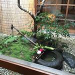 粟 - 中庭にもお野菜が(2015.1.11)